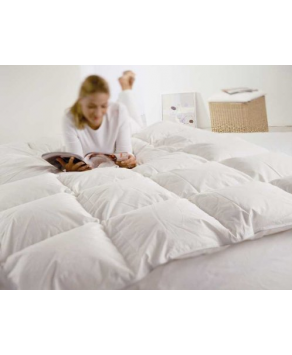 Anti Allergy Bedding - Alps - Sirius Dun Down Duvet - 135 cm x 200 cm
